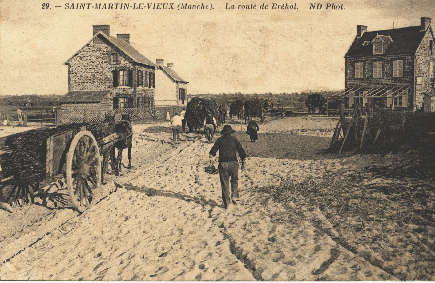 1911 St Martin Ramassage Varech 2 © collection Hervé Cleraux